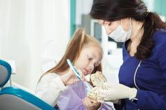 Ребенок на офисе дантиста чистит искусственную человеческую челюсть щеткой стоковые фото