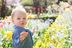 ребенок 11 осени Стоковая Фотография RF