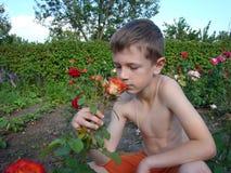 Ребенок пахнуть цветком Стоковая Фотография