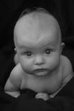 ребенок ребёнка его изолированное деревянное тележки игрушки верхней части малыша бака портрета ретро малое ся белое Стоковая Фотография RF