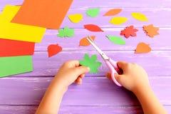 Ребенок режет лист вне покрашенной бумаги Ребенок держит ножницы и зеленые лист в его руках Комплект покрашенной бумаги, красочны стоковое фото