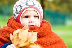 Ребенок с пуком листьев Стоковое Изображение RF