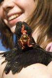 ребенок цыпленка она Стоковая Фотография RF