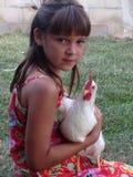 ребенок цыпленка Стоковое Изображение