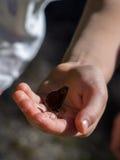 Ребенок чувствительно держа бабочку стоковые фото