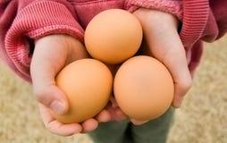 ребенок eggs удерживание Стоковое фото RF