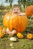 Ребёнок внутри гигантской тыквы Стоковое Изображение