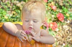 Ребёнок в тыкве стоковая фотография rf