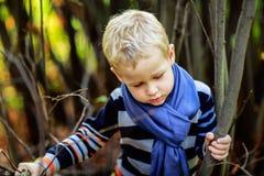 Ребёнок играя среди ветвей дерева Стоковая Фотография RF