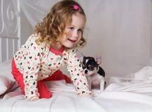 Ребёнок сидит на кровати с собакой чихуахуа Стоковая Фотография