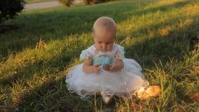 Ребёнок сидя на траве в белом платье, взгляды на ее ладони, держа ель-конус в другой руке Заход солнца внутри сток-видео