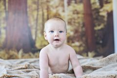 ребёнок 7 месяцев старый стоковые изображения rf