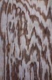 древесина предпосылки старая Стоковое Фото