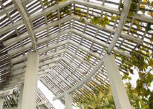 древесина структуры крыши Стоковое Фото