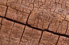 древесина текстуры теней предпосылки коричневая Стоковое Фото