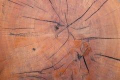 древесина треснутая предпосылкой Стоковые Изображения