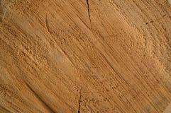 древесина стоковые фотографии rf