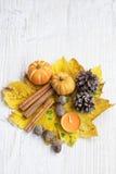 древесина pomegranate в октябре виноградин украшения каштана осени Тыквы, высушенные листья, жолуди и циннамон Стоковые Изображения RF
