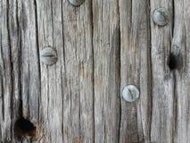 древесины стоковое фото rf