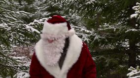 древесины claus santa сток-видео