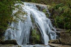 Реветь, который побежали падения, национальный лес Jefferson, США Стоковое Изображение