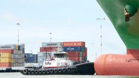 РЕВОЛЮЦИЯ буксира на смычке ЗИМЫ грузового корабля CSCL Стоковое Изображение RF