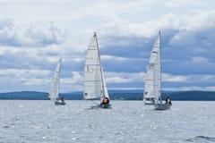 Регата: Озеро Tavatyi Стоковые Изображения