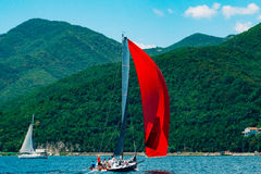 Регата плавания в Черногории Регата на яхтах в заливе Boka Стоковая Фотография