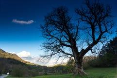 Региональный природный парк лазурного PreAlps Стоковые Изображения