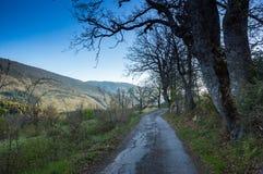 Региональный природный парк лазурного PreAlps Стоковые Изображения RF