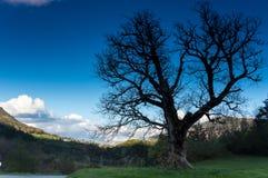Региональный природный парк лазурного PreAlps Стоковое Изображение