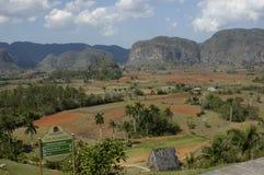 Регион Viñales, Кубы стоковые фотографии rf