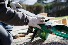 регулирует человека chainsaw Стоковые Фото