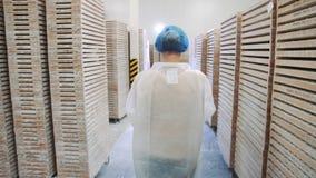 Регулятор проверяя складское помещение фабрики видеоматериал