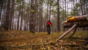 редакционо велосипедист с его назад к камере проходит раздел дороги видеоматериал