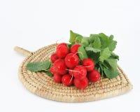 редиски красные Стоковое Фото