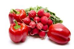 редиски перца красные Стоковые Фото
