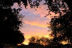 Редкие облака Mammatus естественно обрамленные деревьями после шторма в Midwest во время лета стоковые фото