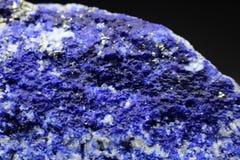 Редкий электрический голубой образец минерала Hauyne Стоковое фото RF