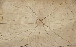 Резать старой древесины стоковые фото