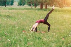 Резвит девушка делая тренировки в древесинах, на поле, парк Йога, спорт стоковые фото