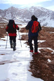 резвит зима Стоковая Фотография RF