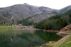 Резервуар вилки Tibble Стоковое Фото