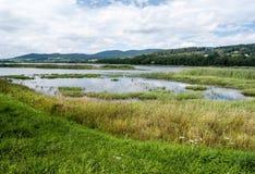 Резервуар воды Lipno с холмами на предпосылке стоковое фото