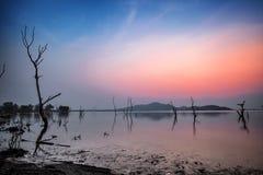 Резервуар и мертвый силуэт дерева с небом захода солнца Стоковая Фотография