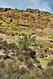 Резервуар озера Saguaro, Maricopa County, Аризона, Соединенные Штаты стоковое фото
