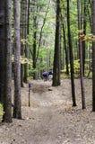 Резервуар тернера Hikers Стоковые Изображения
