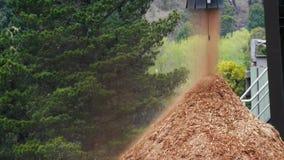 Резерв деревянной щепки видеоматериал