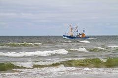 Резец и выключатели рыбной ловли Стоковое Изображение RF