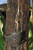 резина 2 Стоковое Фото